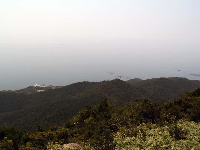 Mt_myozin_8