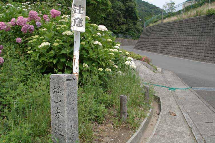 Oono_shiroyama_2
