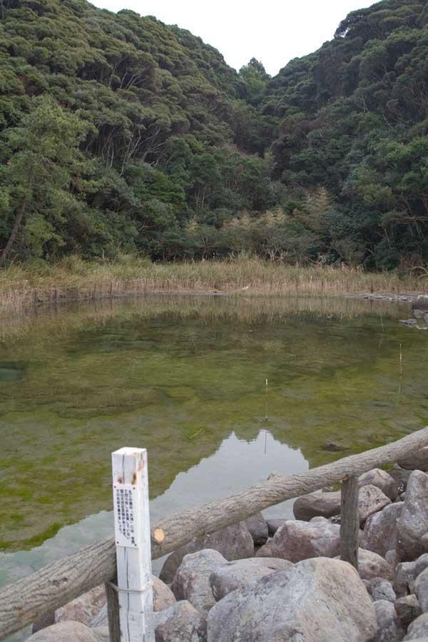 Tebashima_11