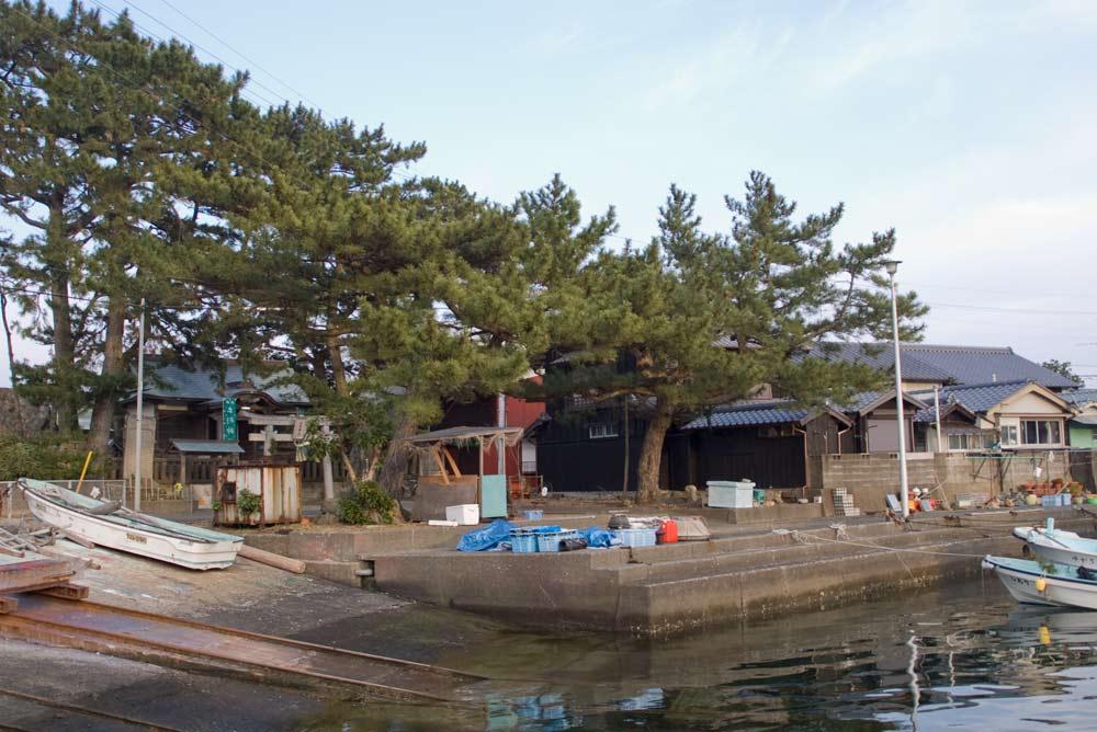Tebashima_2