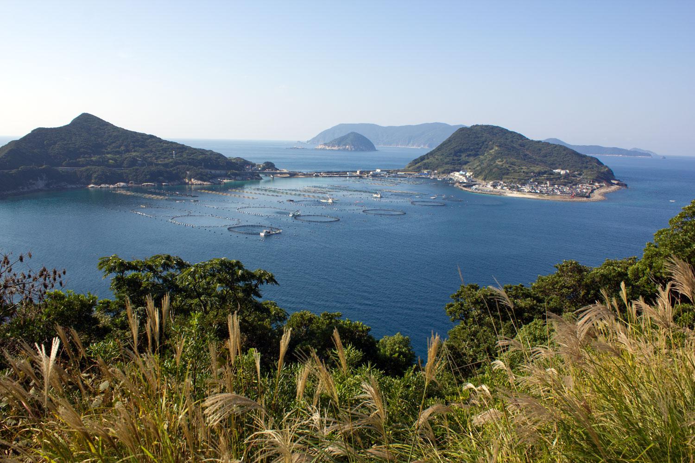 Kashiwajima